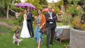Die Hochzeitsverplaner (2017)