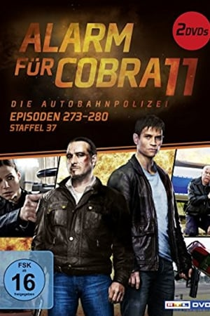 Season 37