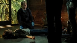 CSI: Crime Scene Investigation: 15×2