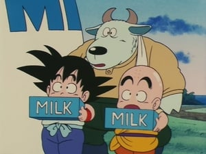 Dragon Ball: 1×17