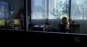 HD series online CSI: Crime Scene Investigation Season 6 Episode 6 Secrets and Flies