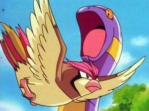 Pokémon: 1×3