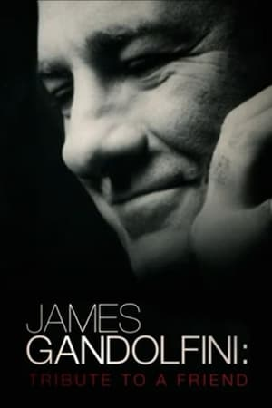 James Gandolfini: Tribute to a Friend-James Gandolfini