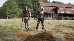 The Walking Dead 2×8