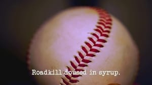 Roadkill Doused in Syrup