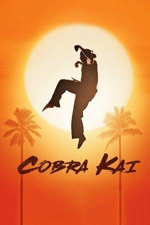 poster Cobra Kai - Season 3 Episode 1 : Aftermath