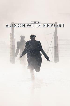 The Auschwitz Report (2020)