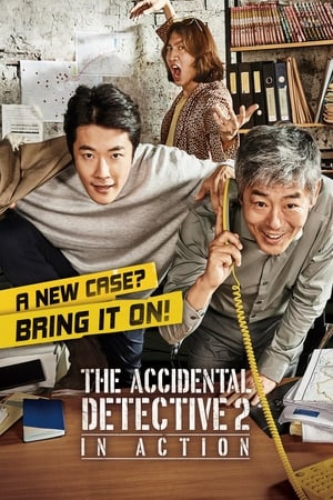 The Accidental Detective 2: In Action Subtitle Indonesia
