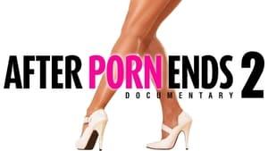 poster After Porn Ends 2
