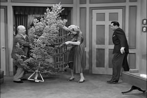 I Love Lucy 6×11