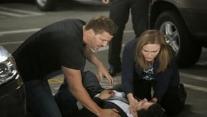 Online Bones Temporada 10 Episodio 1 ver episodio online The Conspiracy in the Corpse