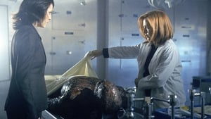 The X-Files: 9×19