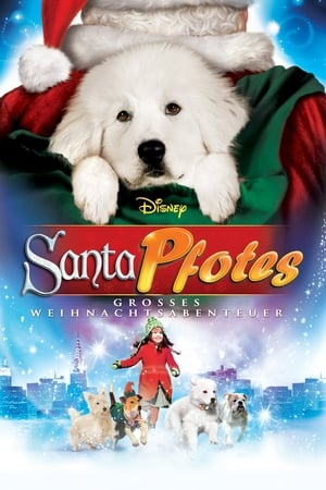 Santa Pfotes grosses Weihnachtsabenteuer