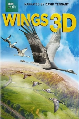 Play Wings 3D