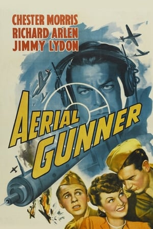 Aerial Gunner