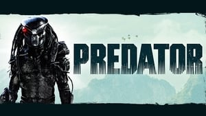 Predator Streaming HD