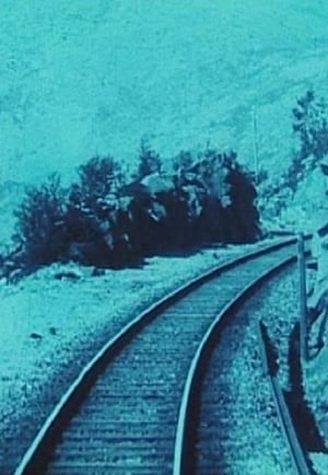 Image Aboard the World's Northernmost Railway
