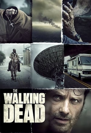 The Walking Dead 6ª Temporada Torrent, Download, movie, filme, poster