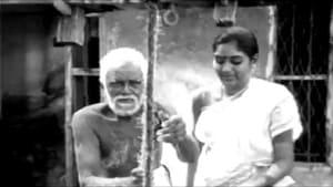 Sandhya Ragam Trailer