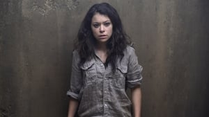 Assistir Orphan Black 3a Temporada Episodio 05 Dublado Legendado 3×05