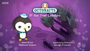 The Octonauts: Season 4 Episode 8