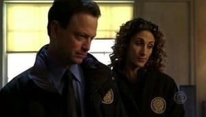 CSI: Kryminalne zagadki Nowego Jorku: 1×11