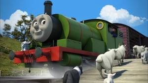 Thomas & Friends Season 19 :Episode 9  Very Important Sheep