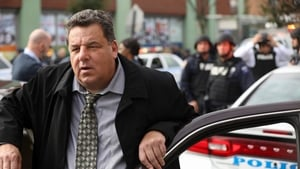 Blue Bloods: 8×11