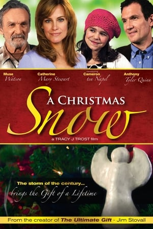 A Christmas Snow-Anne Winters