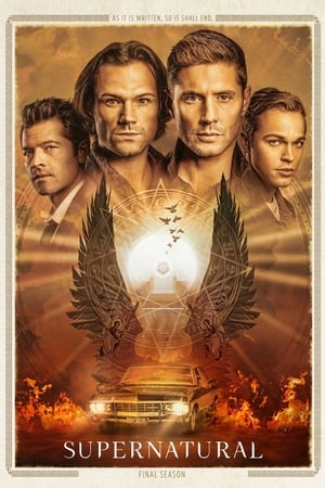 Supernatural 15ª Temporada Torrent, Download, movie, filme, poster