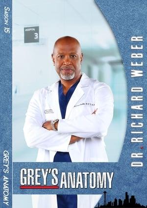 Grey's Anatomy Saison 16 Épisode 12
