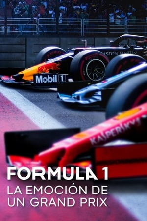 Image Formula 1 Drive to Survive