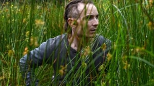 The Survivalist [2015]