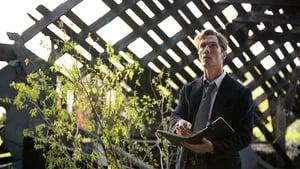 True Detective Saison 1 Episode 2 en streaming