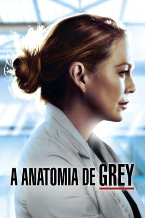 poster Grey's Anatomy - Season 7 Episode 2 : Shock to the System