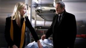 Scene of the Crime Season 39 : Episode 12