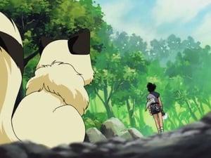 戦国お伽草子–犬夜叉 – Сезон 1, епизод 163