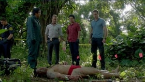 Hawaii Five-0 Season 2 :Episode 17  Defender