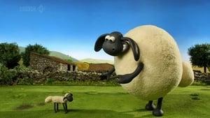 Shaun the Sheep Season 2 Episode 9