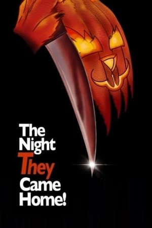 Mr. Bungle: The Night They Came Home              2021 Full Movie