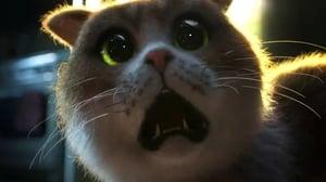 Scaredy Cat (2020)