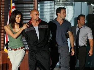 Hawaii Five-0 Season 1 :Episode 19  Heroes and Villains