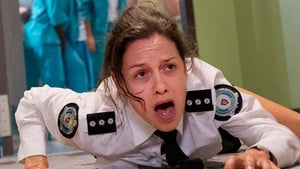 Wentworth - Temporada 2