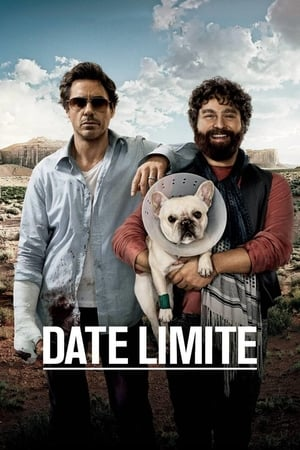 Date limite  (Due Date) streaming