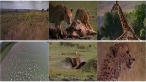 Afrika: Die Serengeti (1994)