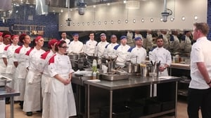 Hell's Kitchen Season 15 Episode 1