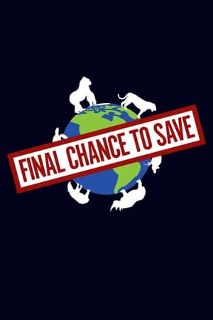Final Chance to Save