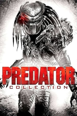 Trilogia Predador (1987-1990-2010) BluRay 1080p Dublado Dublado Torrent Download
