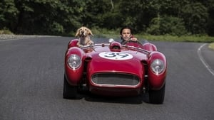 The Art of Racing in the Rain (2019) Hollywood Full Movie Watch Online Free Download HD