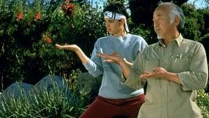 Karate Kid 1, el momento de la verdad
